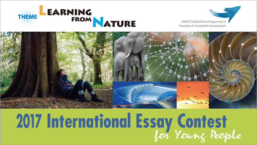 international essay contest for young people learn from nature international essay contest for young people learn from nature