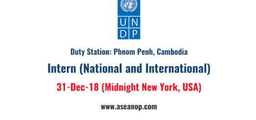 UNDP Internship opportunity for National and International Students