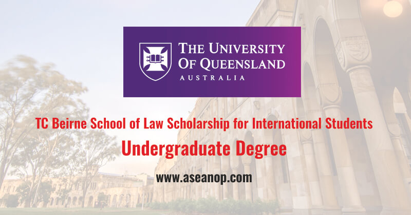 TC Beirne School of Law Scholarship for International ...