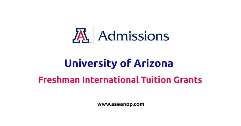 Freshman International tuition grants at University of Arizona 2020-2021