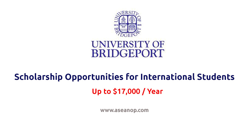 The University of Bridgeport Scholarship Opportunities for International Students