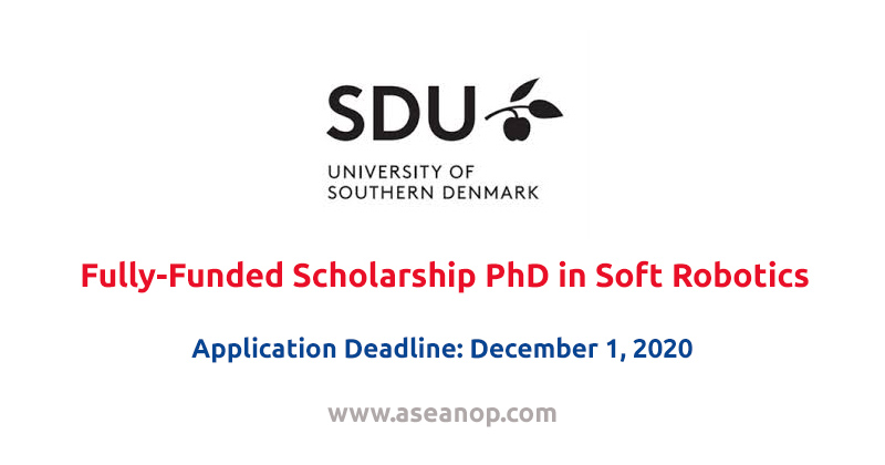 Fully-Funded PhD International Position in Soft Robotics at University of Southern Denmark, 2020